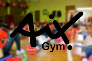 Web Page Development for Aix Gym